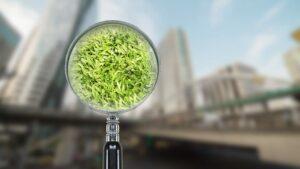 evaluation environnementale normandie